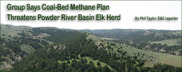 PRB plan may threaten elk