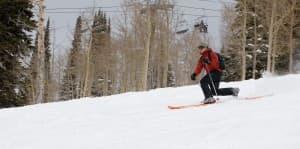 telemark skier