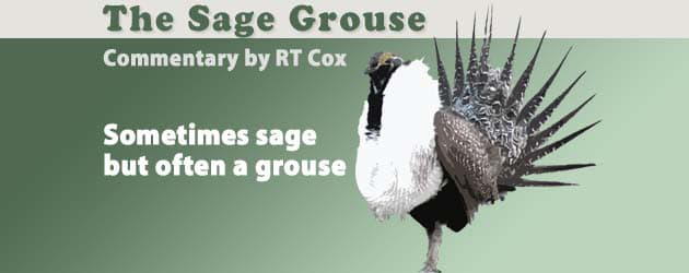 The Sage Grouse