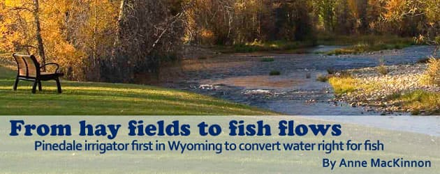 From hay fields to fish flows: Pinedale irrigator first in Wyoming to convert water right for fish