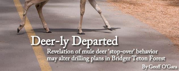 Deer-ly Departed: Revelation of mule deer 'stop-over' behavior may alter drilling plans in Bridger Teton Forest