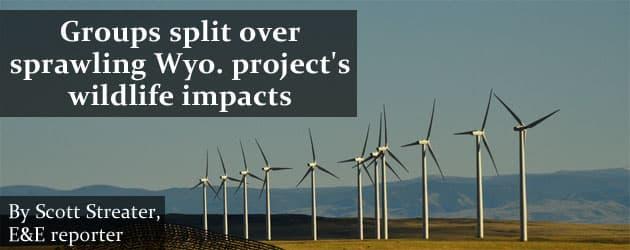 Groups split over sprawling Wyo. project's wildlife impacts