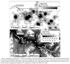 Pronghorn-Wolves population maps