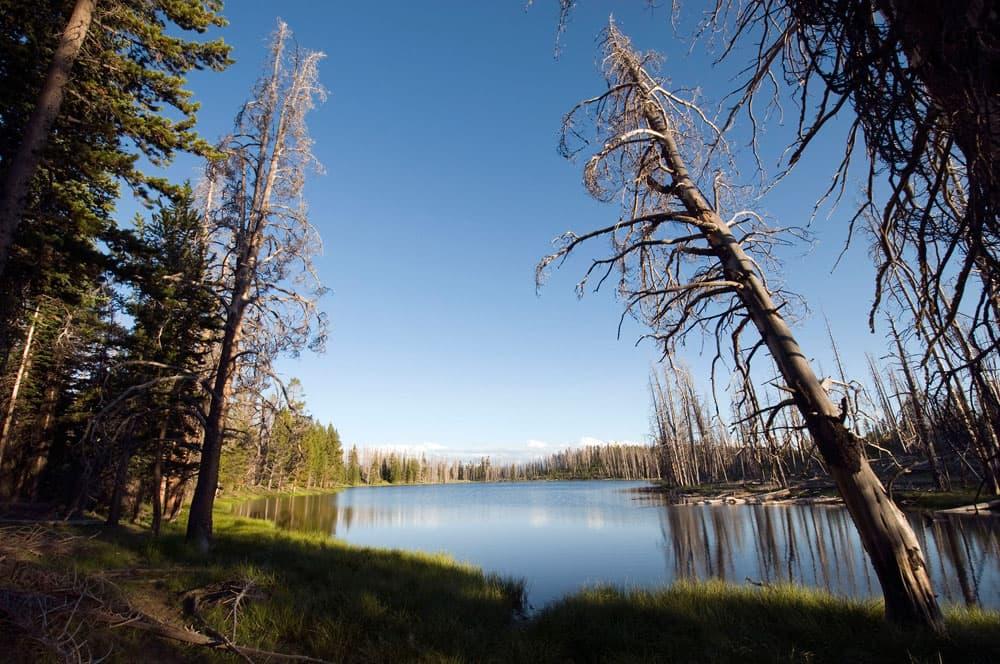 Mirror Lake on Yellowstone's Mirror Plateau