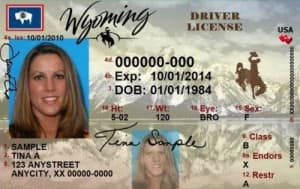 A sample license from Wyoming's Department of Transportation.