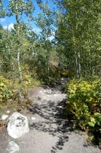 A hiking trail in Grand Teton National Park. (Courtesy Grand Teton National Park — click to enlarge)