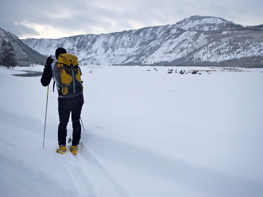 Yellowstone ski adventure reveals unique winter soundscape