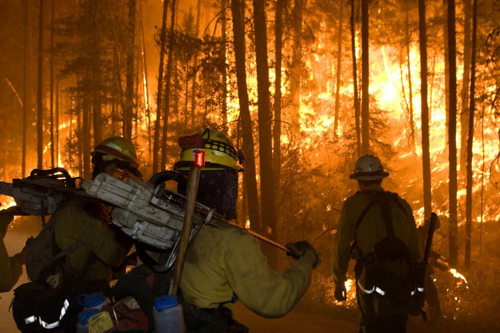 Wildland Firefighters(click to enlarge)