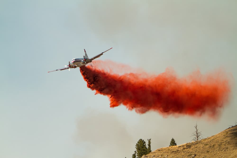 Campaign launched to shift forest firefighting costs