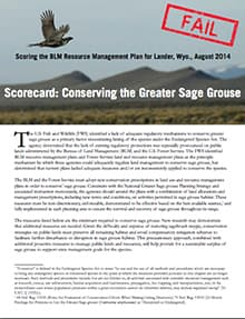 "Here is the conservation groups' scorecard, which they used to give the BLM's Lander resource plan an ""F."" BLM officials disagree with the criticism and call the plan balanced. (click to read)"