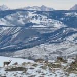 Open letter to Lummis — no merit in land-grab bill