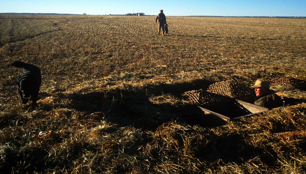 Private lands, like the farm these goose hunters are on in Goshen County, provide essential habitat for wildlife. Some say federal lands, especially in the West, also are fundamental to wildlife conservation but haven't been accounted for in the North American Model of Wildlife Conservation. Proponents of that theory estimate that hunters contribute only 6 percent to wildlife conservation nationwide. (Angus M Thuermer Jr/WyoFile — click to enlarge)