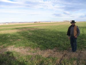 Pavillion area resident John Fenton stands in a field near his home where a natural gas well was drilled. (Dustin Bleizeffer/WyoFile — click to enlarge)