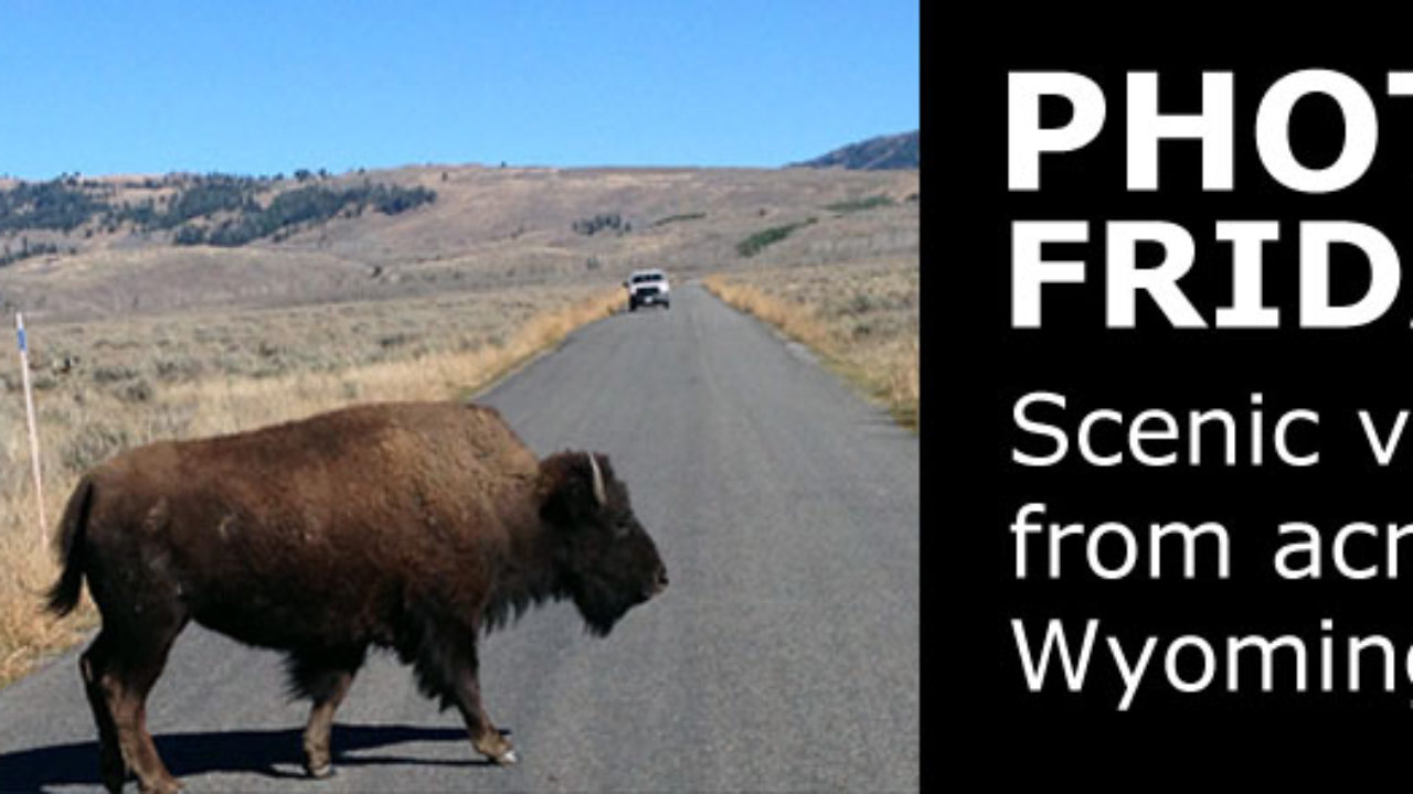 Photo Friday (front page content)   WyoFile