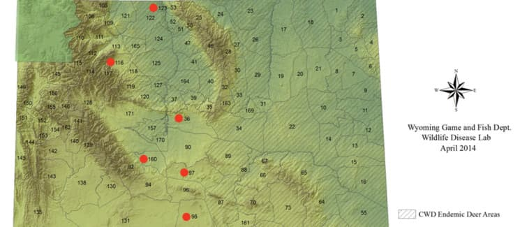 Chronic deer disease marches closer to yellowstone wyofile for Wyoming game and fish maps
