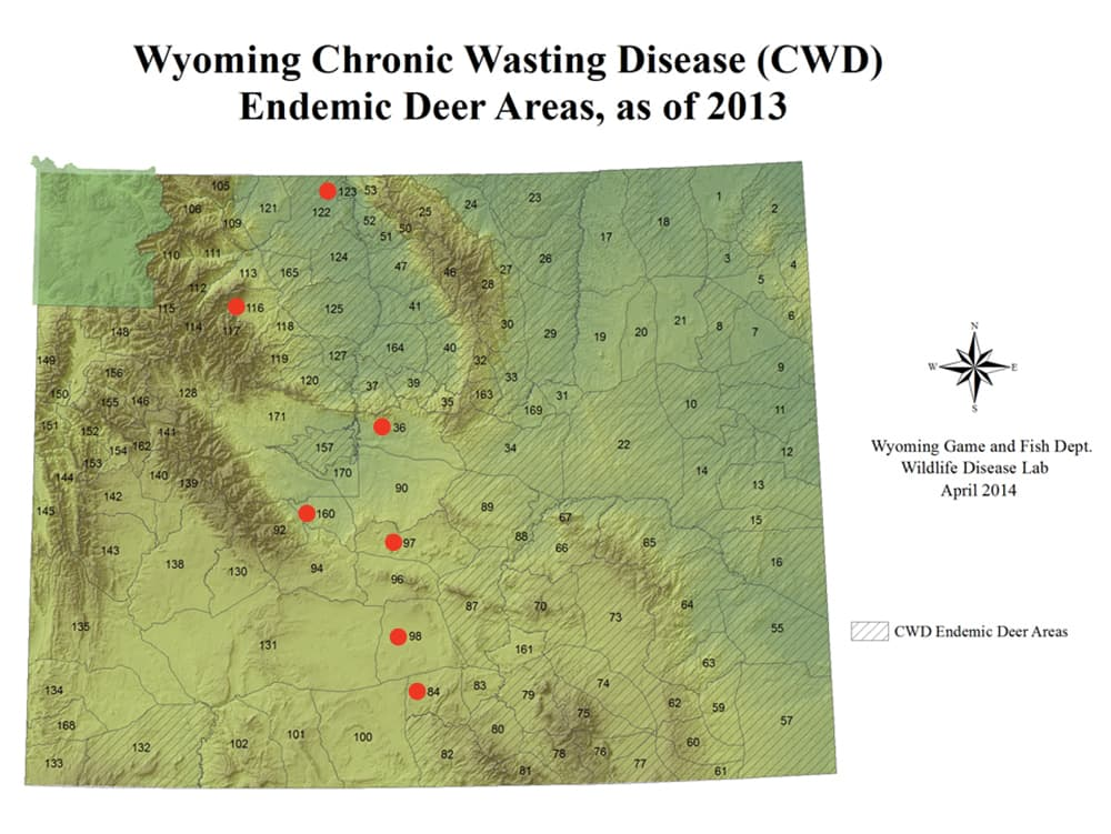 Chronic deer disease marches closer to Yellowstone