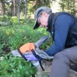 In Grand Teton, retiring biologist sees wildlife restored
