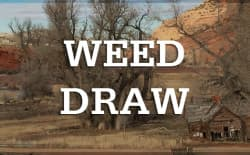Weed-draw-new