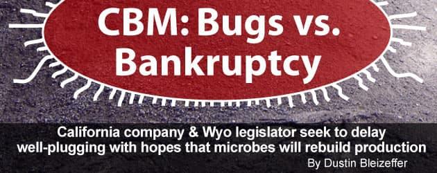 CBM: bugs vs bankruptcy