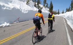 Cyclists climb up the Lewis Canyon section of road from South Entrance to West Thumb. (Photo by Tim Young)