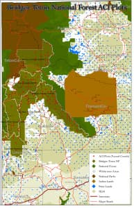The red dots on this map show the approximate locations of plots to be covered by the 2014 vegetation survey of the Bridger-Teton National Forest. Sixteen sites were originally targeted for surveys south and east of Yellowstone National Park in the Teton Wilderness where field worker Adam Steward was killed. Five of those were quickly scratched from the list because travel hazards made them too dangerous to visit. (U.S. Forest Service)