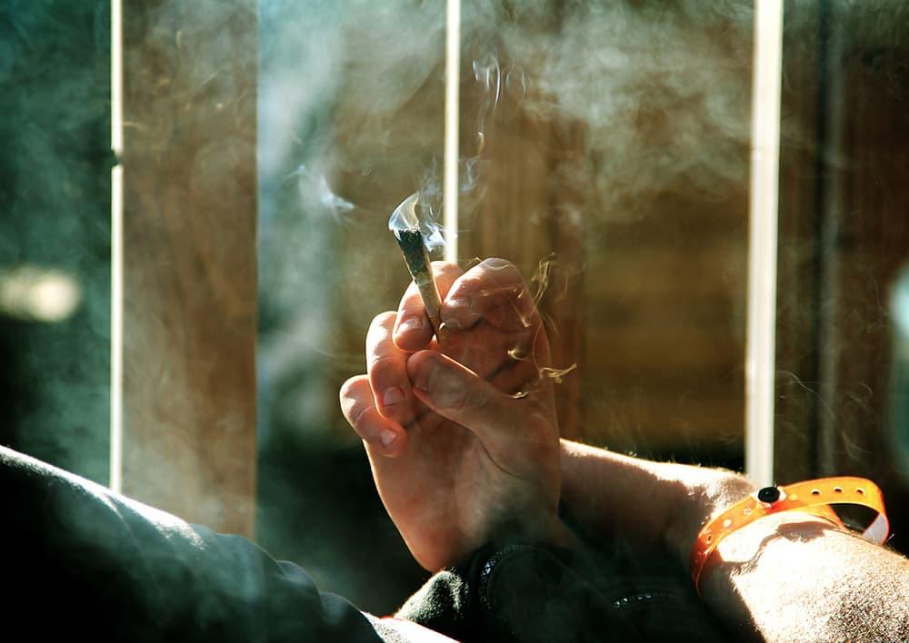Medical marijuana initiative launches in Wyoming