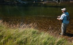 On a low-flow stream in the Wind River Range, Nick Yvernault casts to elusive trout. Wyoming's plan to recategorize 76 percent of the state's waters to allow five times more E. coli bacteria is based on average annual flow. (Angus M. Thuermer Jr./WyoFile)