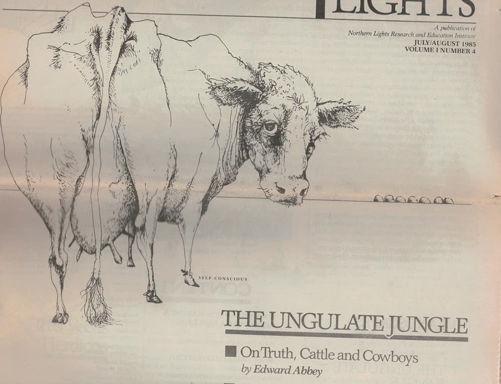 Essays About English Language This Sketch Of A Cows Hind End Accompanied An Essay By Edward Abbey  Published In Argumentative Essay Thesis Example also Argumentative Essay Examples High School Me And Ed A Legendary Author Breaks His Own Rule  Wyofile Topics For A Proposal Essay
