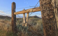 Wyoming officials request dismissal of the lawsuit challenging the state's new data trespass law. (Flickr Creative Commons/AJ Schroetlin)