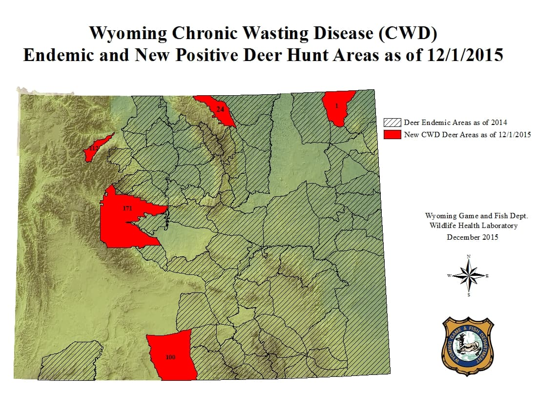 Research paper chronic wasting disease