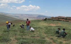 Montana Conservation Corps (MCC) crews, made up of high school and college students from the Wind River Indian Reservation, helped Chicago Botanic Garden interns collect seeds for the Seeds of Success program in the Lander Field Office area in Wyoming. Attorneys for Wyoming recently defended newly enacted data trespass laws before a U.S. District Court judge. (Creative Commons photo by BLM)