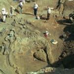 Wyoming's Bighorn Basin is a Jurassic classroom