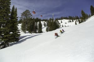 Adults students follow an instructor George Flynn down the slopes at Jackson Hole Mountain Resort. More than 15,000 adults participated in lessons or camps at the resort in 2015. (Courtesy Jackson Hole Mountain Resort)