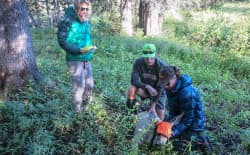 National Park Service employees Jess Erwin, Pete Mumford, and Sarah Dewey process and collar a doe mule deer In Grand Teton National Park. GPS equipped tracking collars are providing new insight into deer migration routes to and from the park.(Grand Teton National Park)