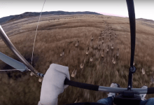 A regulation approved recently  by the Wyoming Game and Fish Commission seeks to curb the use of drones and other aircraft in finding game for hunting purposes (Courtesy Jukin Media)