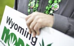 Pro-marijuana paraphernalia adorns Scott Sidman as he encourages passers-by in Casper on Wednesday, May 25, to sign a petition that would put a medical marijuana initiative in front of Wyoming voters. The deputy director of Wyoming NORML, Sidman believes cannabis would help him recover from five back surgeries and the effects of taking addictive medications derived from opium for 10 years. (Tim Kupsick/WyoFile)