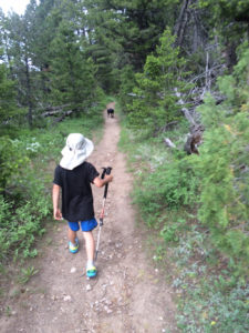 There is no minimum age requirement for the use of walking sticks — on or off trail — throughout the Shoshone National Forest (Photo by Karly Copeland)