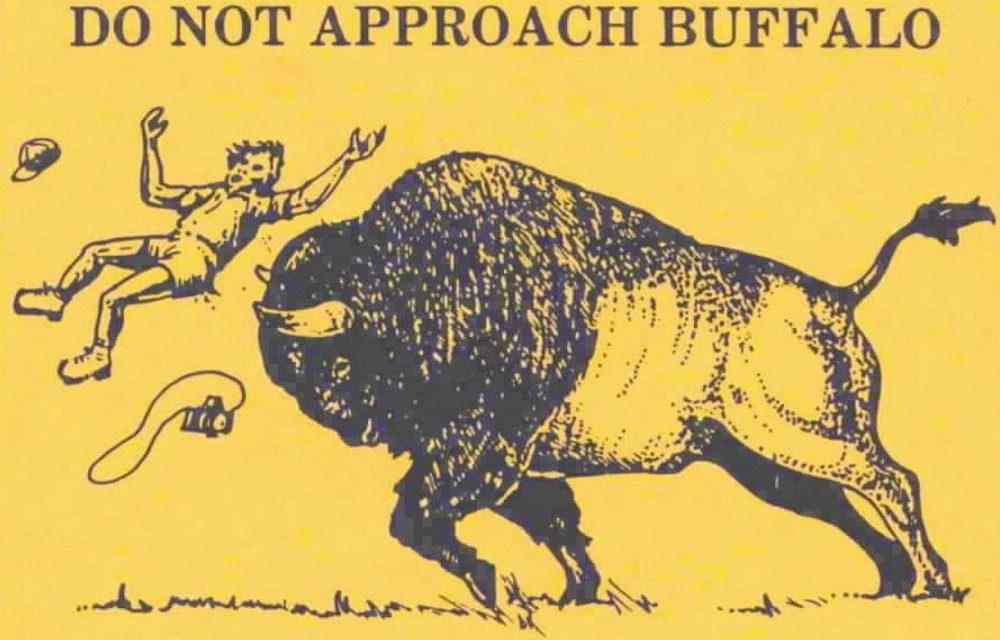 The old bison warning employed Anguished Airborne Illustrated Tourist on its horns for years before he was replaced by Helvetica Man (Yellowstone National Park)