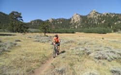 Rich Vincent rides through the Pole Mountain scenery. A charrette scheduled for August will bring together stakeholders to talk about the future management of non-motorized use of the popular trail system. (Rich Vincent)