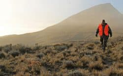 Tonya Lewman walks through the fog and sagebrush while scouting for antelope Oct. 7, near Ucross. Lewman was one of 45 hunters who participated in the Wyoming Women's Antelope Hunt.  (Kelsey Dayton photo)