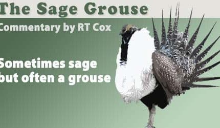 the_sage_grouse_header