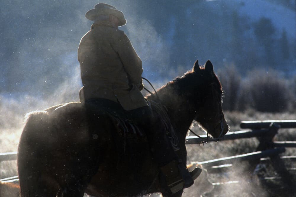 Name that cowboy