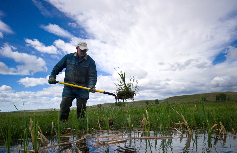 Why a wrinkle in Wyo water law is worth millions