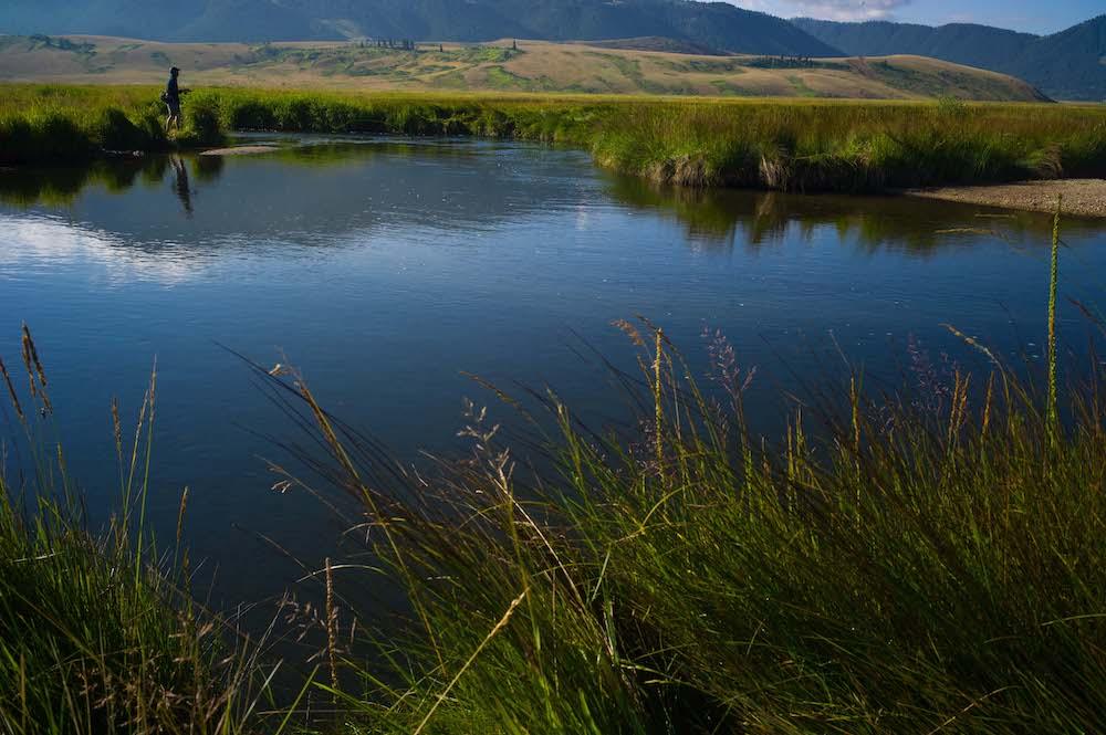 Magical Flat Creek