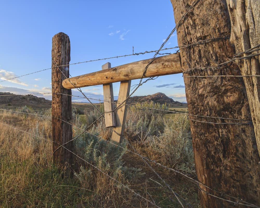 Judge: State must pay $600,000 in fees for trespassing lawsuit